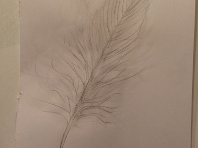 Dreamwork Feather